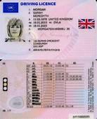 European Driving Licence  Wikipedia