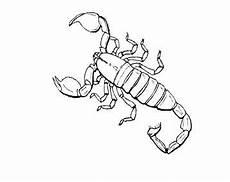 n de 16 ausmalbilder insekten