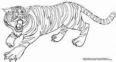 Malvorlagen Gratis Tiger Malvorlagen Kostenlos Tiger
