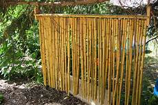 Sichtschutz Terrasse Bambus - 5 ways to create a patio best reports
