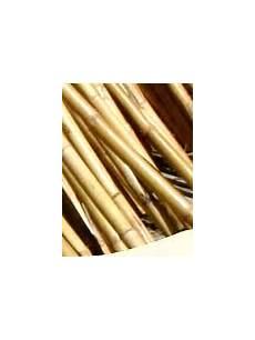 stuoie di canne stuoie di canne tetti di arelle canna di bamb 249