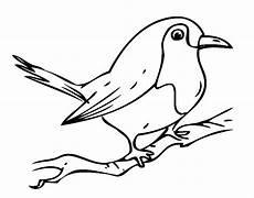 kostenlose malvorlage v 246 gel kleiner vogel auf einem ast