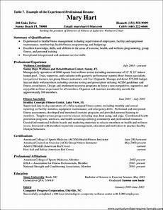 resume format for experienced it professionals pdf free sles exles format resume