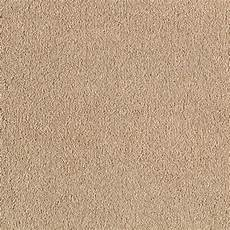 platinum plus stunning color mocha foam 12 ft carpet 0270d 32 12 the home depot