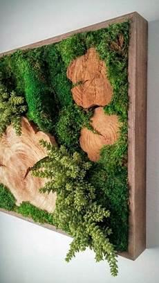 Moosbild Selber Machen - 1001 ideen zum thema moosbilder selber machen garden