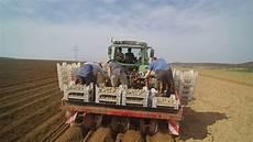 kartoffeln stecken 2017