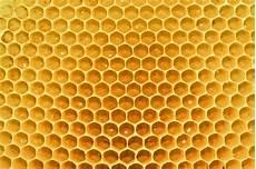 küchenbilder auf leinwand bienenwaben honig wandbild auf leinwand acrylglas kaufen