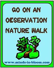 nature observation worksheets 15139 observation nature walk thirdgradetroop walking in nature science activities teaching