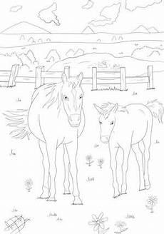 Malvorlage Pferd Din A4 Ausmalbilder Pferde Kostenlose Malvorlagen Zum Ausmalen