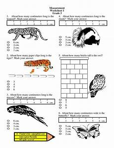 measurement and data worksheets for 1st grade 1415 measurement worksheets grade 2 coloringkids co projects to try measurement