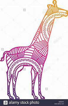 Ausmalbilder Erwachsene Giraffe Vector Illustration Coloring Page Stockfotos