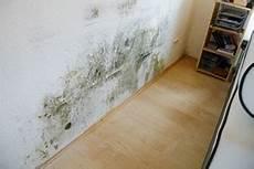 schimmel schlafzimmer entfernen schimmel hinter bett schimmel entfernenschimmel entfernen