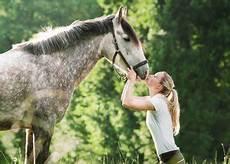 Op Versicherung Pferd - vergleich pferde op versicherung pferd und pony pferd