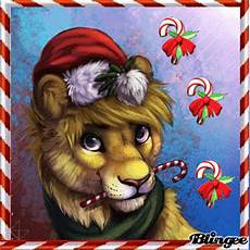christmas lion picture 133892585 blingee com