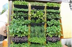 To Plant Vertical Garden by Succulents What S Next On The List