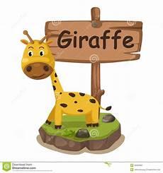 animal en g 30218 animal alphabet letter g for giraffe stock vector illustration of education drawing 45363982