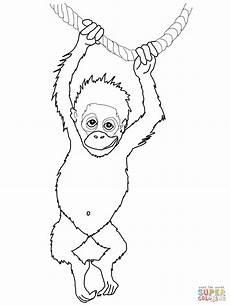 Tierbaby Ausmalbilder Ausmalbild Orang Utan Baby Ausmalbilder Kostenlos Zum