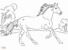 free printable coloring pages coloring pages