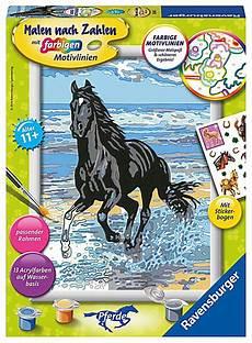 Malen Nach Zahlen Malvorlagen Kostenlos Pferde Pferd Am Strand Malen Nach Zahlen Serie D Pferde