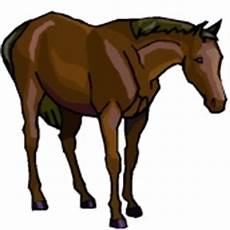 Window Color Malvorlagen Pferde Malvorlagen Window Color Pferde