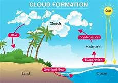 rain formation of clouds water cycle