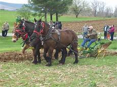 day worksheets 18252 skook news come play in the dirt at plow day 2016