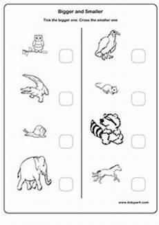 activity sheets for kindergarten printable teachers resources assessment worksheets