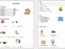 beginners in essential grammar and vocabulary worksheets bundle teaching resources