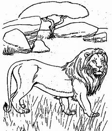 desert animals coloring pages printable 16950 desert animals coloring pages printable color on pages coloring pages for