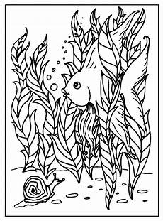 free coloring pages 17574 fish coloring pages s mac s place to be