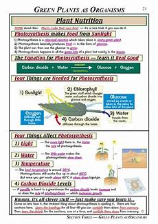 help with science revision ks3 writing reflective essay exles espect studio fast online