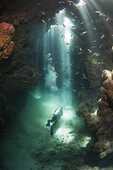 cave diving the 3 best american locations steven becker