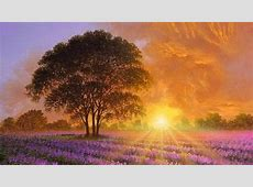 22  Sunshine Wallpapers, Sunrise Backgrounds, Images