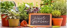 Kitchen Garden A To Z by Permaculture Kitchen Garden The Permaculture Research