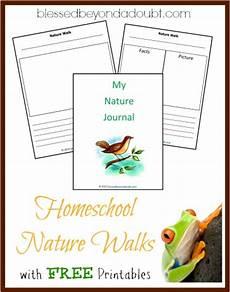 nature walk worksheet preschool 15153 free homeschool nature walk printables free homeschool deals