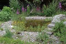 Ein Teich F 252 Llt Sich Mit Leben Naturschutz Ch