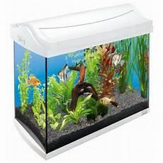 tetra aqua white fish tank kit 30l
