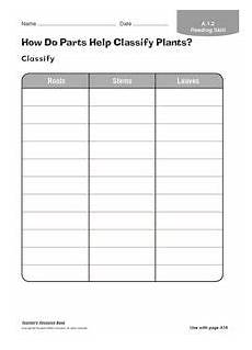 classifying plants worksheets 3rd grade 13524 plant classification lesson plans worksheets lesson planet