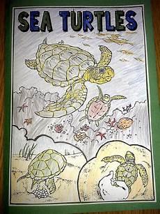 iman s home school sea turtles lapbook and unit study