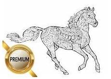 Malvorlage Pferd Erwachsene Malvorlagen Pferde Und Ponys Stute Und Fohlen Esel
