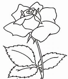 Terkeren 11 Gambar Mawar Hitam Dan Putih Koleksi Bunga Hd