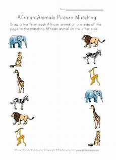 jungle animals worksheets for preschool 13917 picture matching worksheet africa animals animal worksheets animals