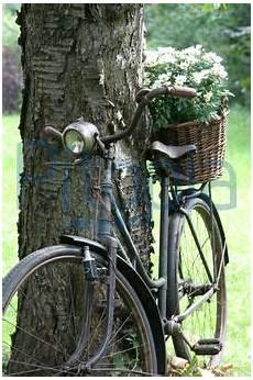 deko fahrrad für blumen altes fahrrad als gartendeko simons lizenzfrei