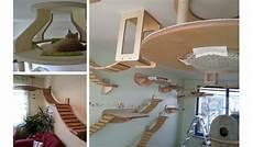 le mobilier pour chat goldtatze votre f 233 va en r 234 ver
