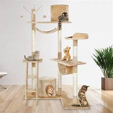 un arbre 224 chat co