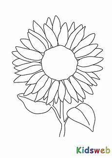 Malvorlagen Sonnenblumen Ausdrucken Sonnenblume Malvorlage Coloring And Malvorlagan