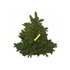 tannenbaum hamburg lieferservice weihnachtsbaumschlagen