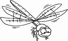 n de malvorlage insekten insekten