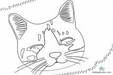 Malvorlage Katzenkopf Einfach Malvorlage Katzenkopf