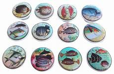 Kitchen Cabinet Hardware Whimsical by 12 Whimsical Fish Cabinet Knobs 12 Set Reviews